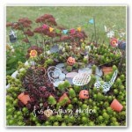 F is for Fairy Garden